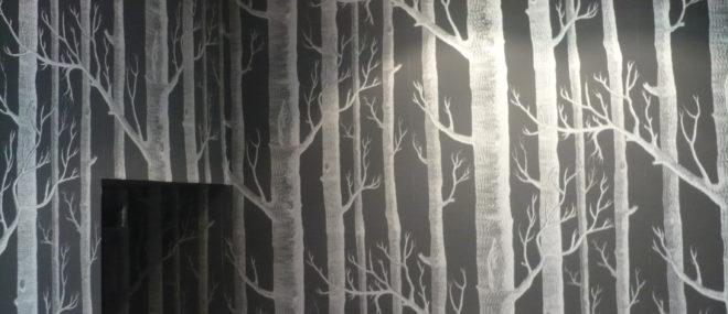 Entreprise de peinture - Caen - Brio Décor